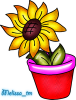 sunflower in a vase png by Melissa-tm