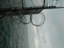 Fence outed of the water by o0oO-araceli-Oo0o
