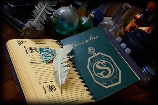agenda Potter 2012 photo 09 by SianaLaurie