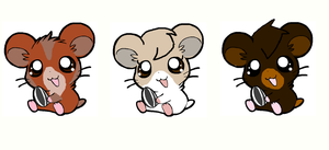 Hamster Adopts by PerkyPitch