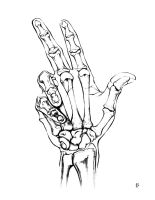 Hand Drawing X-Ray by SparksflyStudios