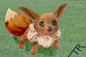 Real Eevee by TR-the-only-one
