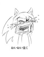 sonic cry 15 cry bitterly by bbpopococo