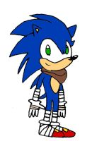 Sonic the Hedgehog (Sonic Boom) by RocketSonic