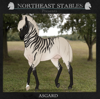 ES Asgard 599 by NorthEast-Stables