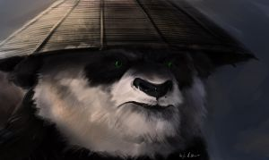 Kung Fu Panda by DeviantDolphinART