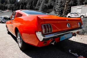 Ford Mustang Back by sKodOne