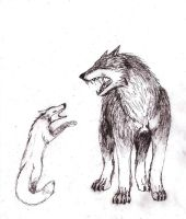 wolf and fox arguing by Rhahsid