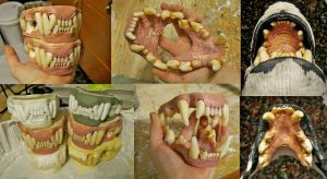 Hyena jaws! taxidermy cast by Crystumes