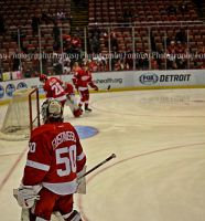 Detroit Red Wings - Gustavsson by VampireBree