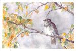 Autumn and a thrush by Korpinarhi