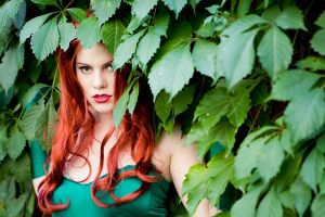 Into the Ivy by gillykins