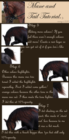 Mane and Tail Tutorial. part 2 by emmy1320