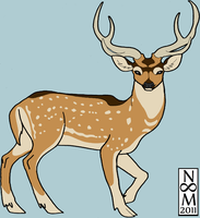 Chital by toast4nat