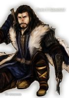 Thorin by lights510