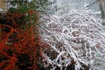 FirstSnow 0114 12-4-16 by eyepilot13