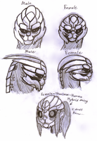 Female Turian Concept by SalemTheCat23
