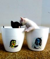 Flower pots and kittens, Pablo Picasso series by naraosart