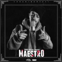Maestro All Tracks 2009 2012 by DemircanGraphic
