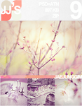 JJ's PSD+ATN 9 by enhancers