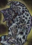 Spotted Bengal Cat by J-A-N-I-N-E