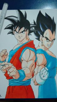 Goku and Vegeta - Dragon Ball Z by Evinkar