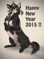 happy New year 2015! by lauraacan