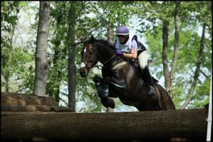 Rolex 2010- Forest Jump by Phantom303