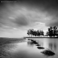 when the morning comes vi by warnaiman