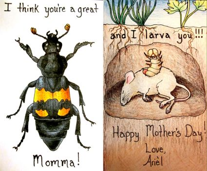 Entomologist Mother's Day Card by HedwigtheStrange