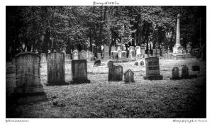 Graveyard 0010 bw by yellowcaseartist