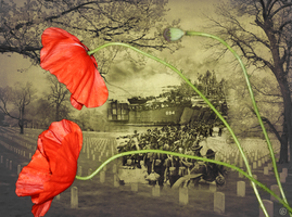 Remembrance by Lindalees