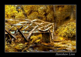 Hareshaw Bridge 2 by newcastlemale