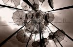 flying umbrellas by archonGX