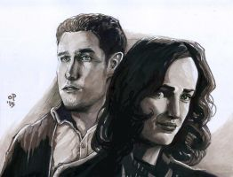 FitzSimmons by olybear