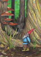 Lost Gnome by ANDYLYONS