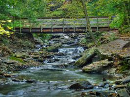 Ricketts Glen State Park 16 by Dracoart-Stock