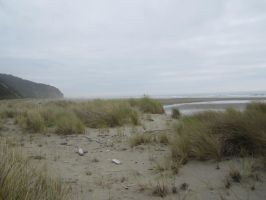 Oregon Coast 001 by PenhuinStockService