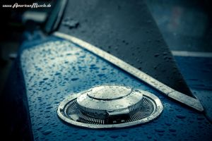 raindrops.. by AmericanMuscle