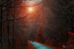 lead me by light... by ildiko-neer