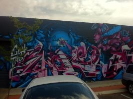 Mt Lawley by PerthGraffScene