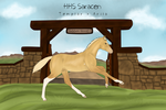 HHS Saracen by Floricenti