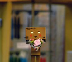 Happy Danbo by marjol3in1977