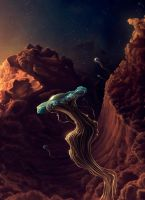 The jellyfish space travel by ImaginateArtwork