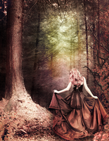 Vintage Wanderer by Ruminescent