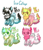 Ice-Cats Adopts! CLOSED. by XxAdoptxX