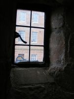 Window Through A Window1 by Tasastock