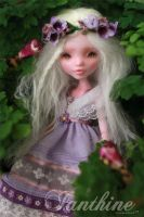 Ianthine - Custom Monster High Doll Draculaura by blanki