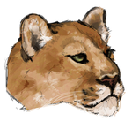 Puma brush study by painted-flamingo