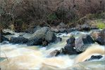 The Daliot river by ShlomitMessica